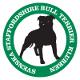Svenska Staffordshire Bull Terrier Klubben
